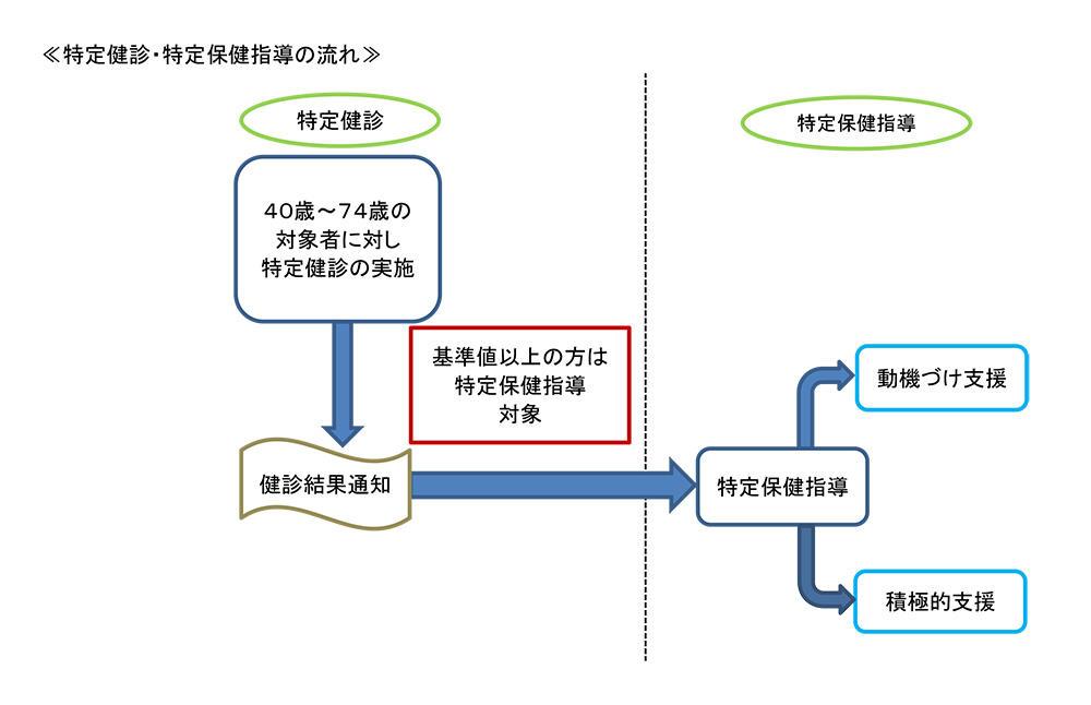 特定健診・特定保健指導の流れ図